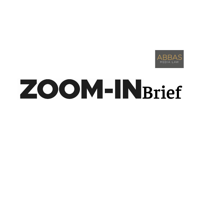 zoomin-brief